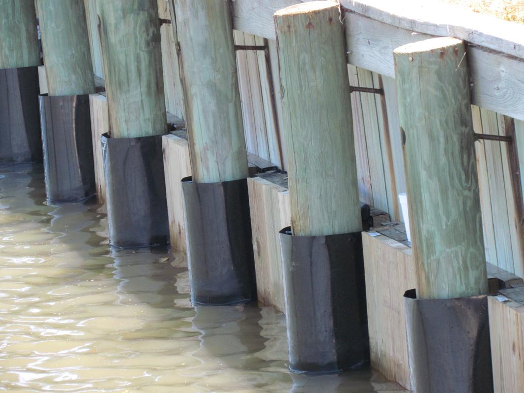 Piling Repair Dock Building Dock Repair Piling Wraps