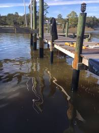 florida fishing dock repair